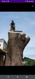 Título do anúncio: Sou podador de árvore