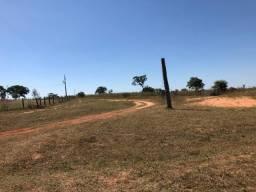7800 hectares, lavoura, pecuária, Primavera do Leste-MT