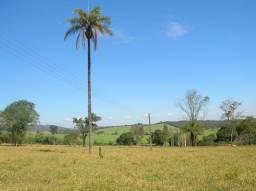 Sitio patrocinio paulista
