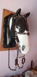 Conjunto bomba inox - Cavalo Crioulo
