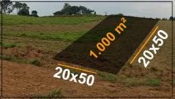 Invista em terra 1.000m²