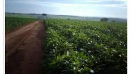 Fazenda em Santana do Araguaia - PA