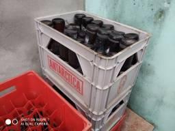 Cx de cerveja com vasilhame