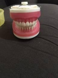 Título do anúncio: Manequim top dentística Pronew - 100