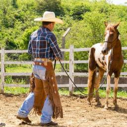 Doma Horsemanship Básico Curso