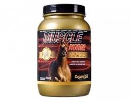 Cavalo forte Muscle
