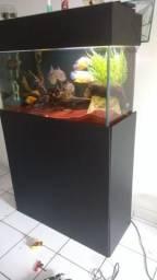 Móvel aquário e tampas