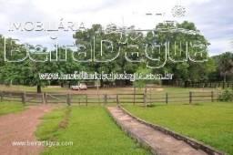 Fazenda 404 Alqueirao Pecuaria Barra do Garças MT
