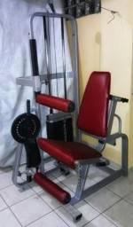 Maquina de Musculação, Extensora e Flexora sentada. 2 em 1
