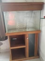 Vendo ou troco aquário com estante