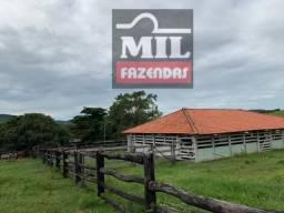 Excelente para pecuária Cultura Fazenda 111.5 Alqueires ( 540 ha) Nova America \ Crixás-GO