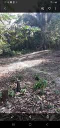 Vendo ou troco este terreno na estrads de novo airão kl6 ramal 4 irmãos