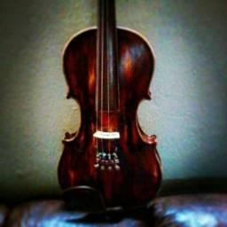Violino vnm40 michael envelhecido