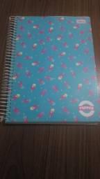 Material escolar Cadernos 10 12 16 matérias