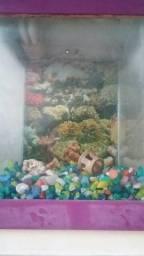 Vendo aquário em perfeito estado só tá faltando a bomba