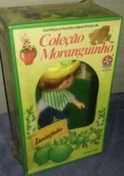 Procuro boneca Limãozinho - primeira série 1982/83