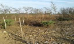 Vendo terreno em Amontada