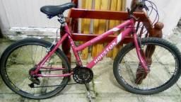 Bicicleta 21macha