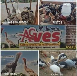Título do anúncio: Ac aves