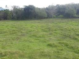 Sítio em Santo Amaro 4 hectares Próximo ao Centro Com Pastagens