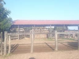 Fazenda 526 Alqueires ( 2.546 ha ) - Floresta do Araguaia-PA