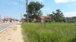 Dois lotes com frente para Rodovia em Jaguaruna