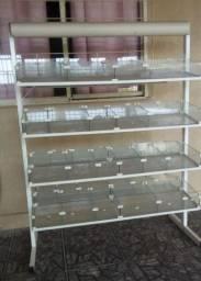 Expositor metálico com divisórias de vidro