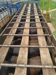 Vendo gaiola boiadeira 7.500