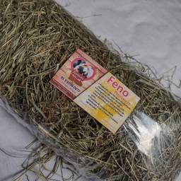 Título do anúncio: Acessórios pra roedores Recife