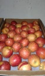 Destribuidora de frutas e verduras