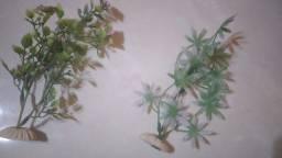 Título do anúncio: Plantas para aquario