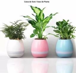 Vaso de plantas Caixinha de som : Toca som via bluetooth e tem luminaria led colorida!