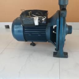 Bomba Eletroplas 2cv 110V