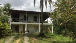 Sítio com duas casas, árvores frutíferas e poço artesiano
