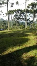 Terreno à venda, 810 m² por R$ 450.000,00 - Casagrande - Gramado/RS