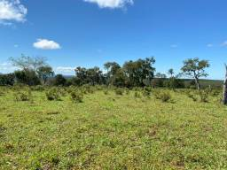 Título do anúncio: 900 hectares, 400 hectares de pastagens,Região Nova Brasilandia, Chapada-MT