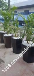 Título do anúncio: Vasos com palmeiras areca