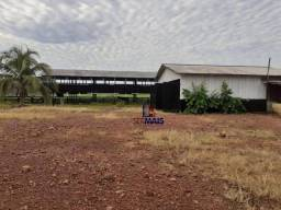Fazenda à venda, por R$ 1.500.000 - Canutama - Manaus/AM