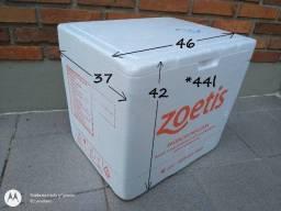 Kit Caixa Isopor 44l + 2 Gelo Gel - BAG Acampamento Viagens Mantimentos Bebidas