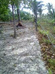terreno próximo ao porto do itaqui.