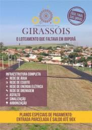 Loteamento em Ibiporã - Residencial Girassóis