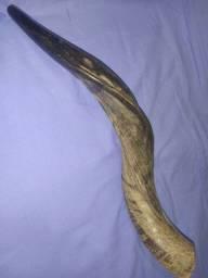 Shoffar de Antílope Kudu - (Aceito trocas ver descrição)