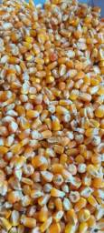 Título do anúncio: Saca de milho