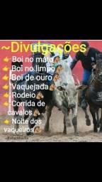 Grupo de vaqueiros zap!!