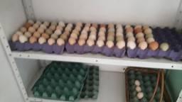 Ovos de galinha caipira!!!