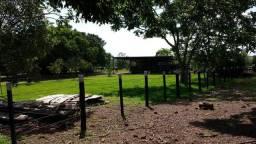 Fazenda 202 hectares em Várzea Grande para pecuária á venda
