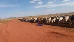 Fazenda à venda, por R$ 160.000.000 - Zona Rural - Paraúna/GO