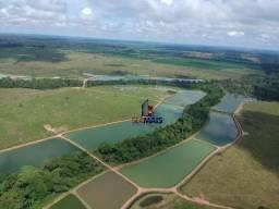 Fazenda à venda, 10000000 m² por R$ 8.000.000 - Setor 02 - Ariquemes/RO