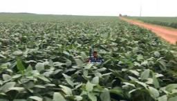 Fazenda à venda, por R$ 150.000.000 - Zona Rural - Nova Mutum/MT