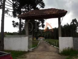 Chácara 4.000m², 02 casas, Tanque de Peixe, em Campestrinho - Mandirituba/PR.